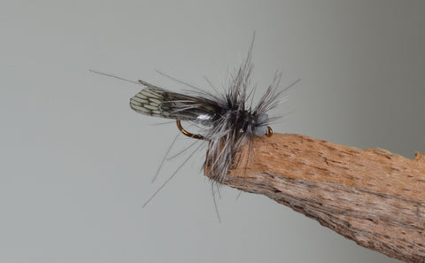 Grey Caddis CDC