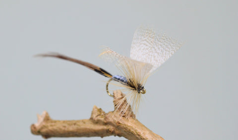 Grey Drake May Flies - Fast Flies top trout flies