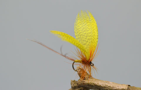 Yellow Drake May Flies - Fast Flies top trout flies