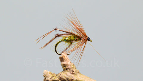 Olive Bristol Hoppers x 3 - Fast Flies top trout flies