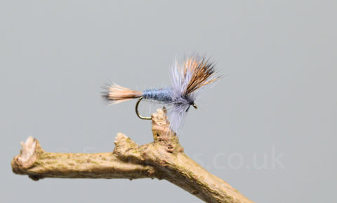 Grey Wulff x 3 - Fast Flies top trout flies