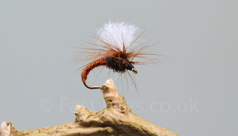 Brown Klinkhammers x 3 - Fast Flies top trout flies