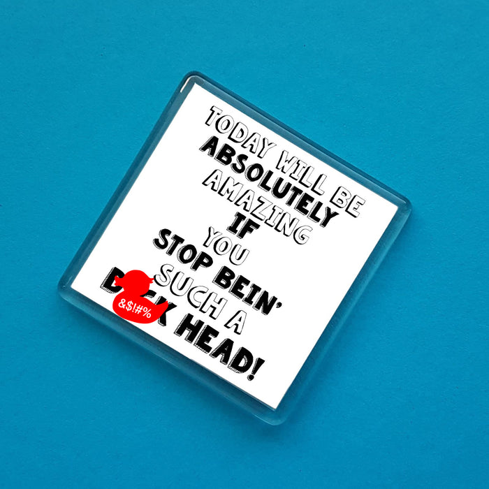 Today will be absolutely amazing if you stop bein' such a D*ck head! Fridge Magnet