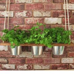 Zero Waste Father's Day Gift Herb Planter