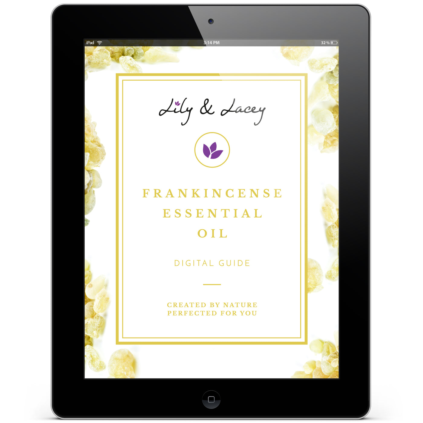 Frankincense Oil - 4 oz.