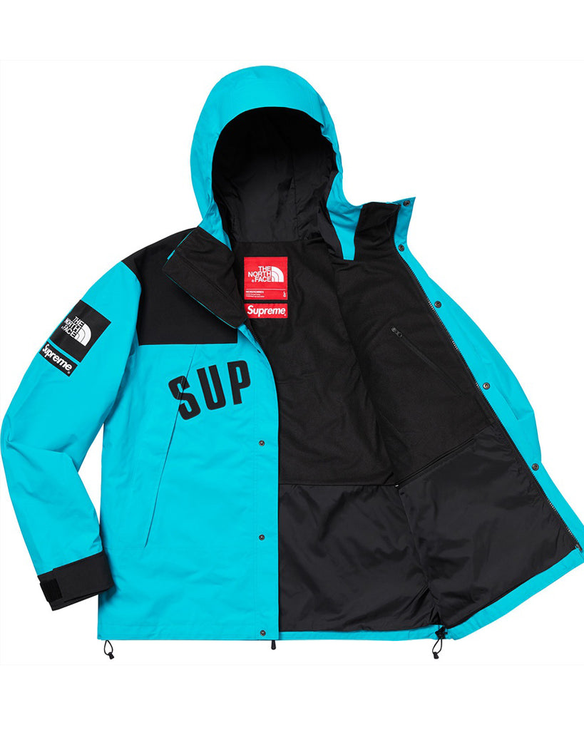 Supreme SS19 Blue North Face Mountain Parka