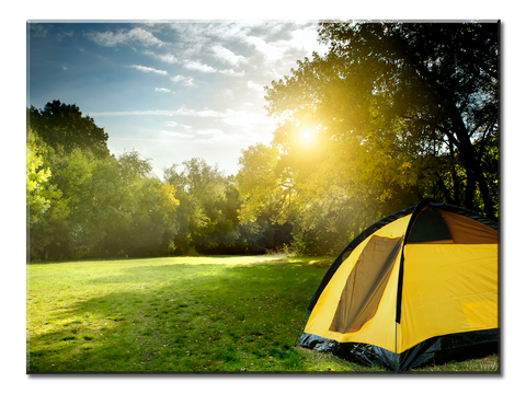 Camping Tents In The Forest - 1 panel