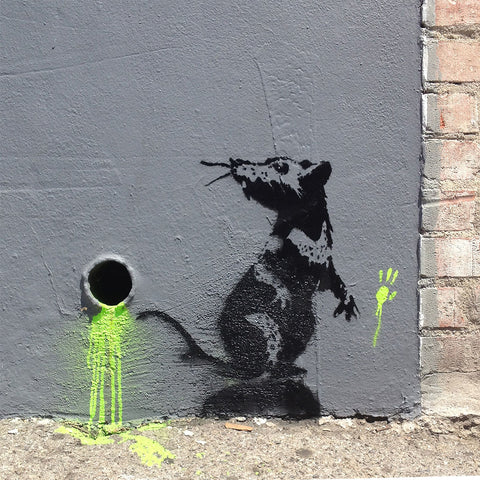 Banksy Toxic Rat, Graffiti Street Art – Print on Metal