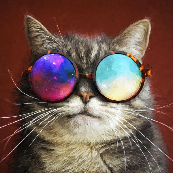 Cat in glasses – Large Modern Art – Photo on Metal