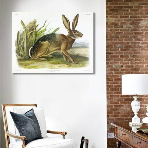 Californian Hare - Vintage Poster on Metal