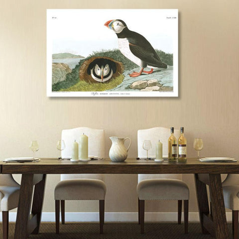 Birds of America, Puffin – Vintage Poster on Metal