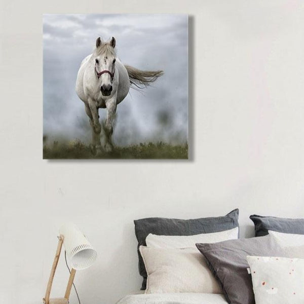Running Horse – Photo Printed on Metal