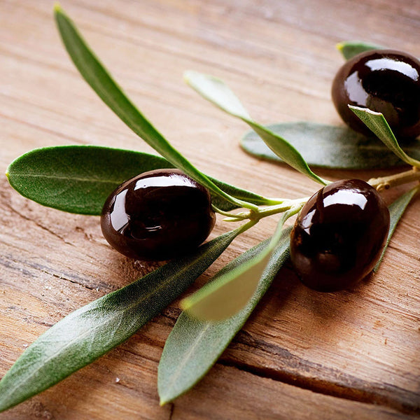 Black Olives – Modern Kitchen Wall Art – Photo on Metal