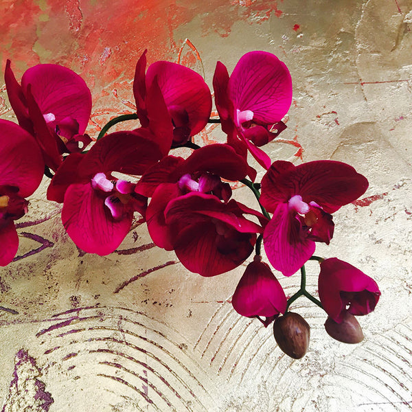 Red Orchid – Large Photo on Metal
