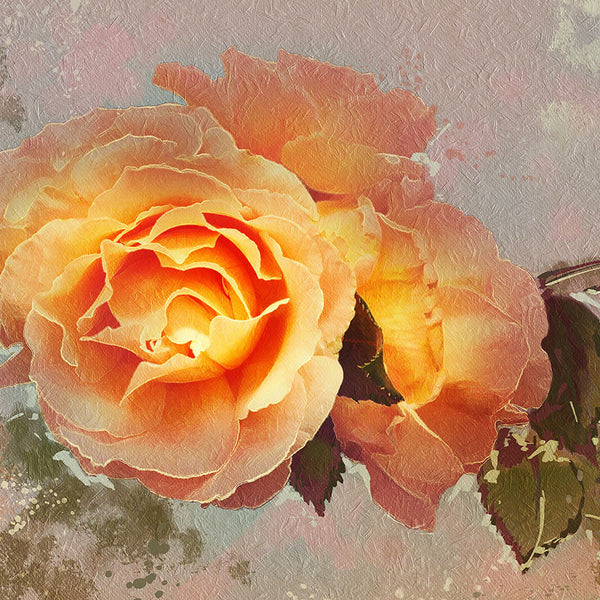 Yellow Rose in Vintage Style  – Modern Art Printed on Metal