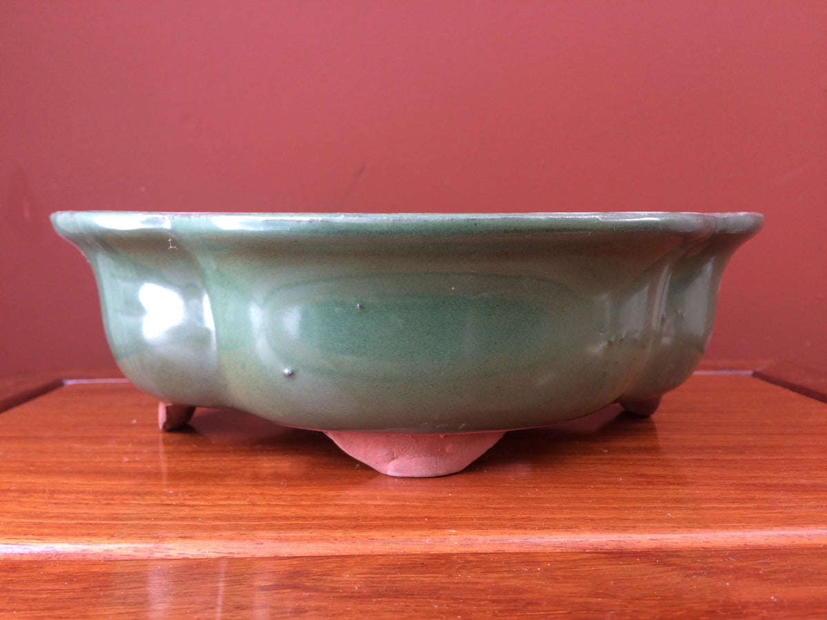 "8"" Green Glazed Lotus Bonsai Pot"