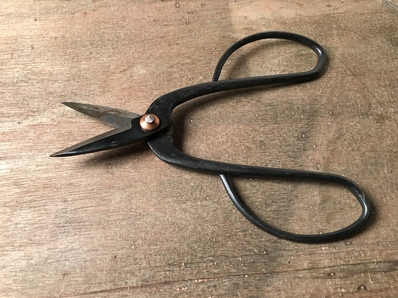 standard bonsai scissors