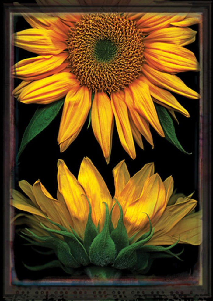 Sunflowers On Black Decorative Flag