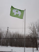 GREEN FLAG WITH WHITE STANDING BUFFALO AND THREE LEAF CLOVER IN THE CENTER ON AN IN GROUND FLAGPOLE