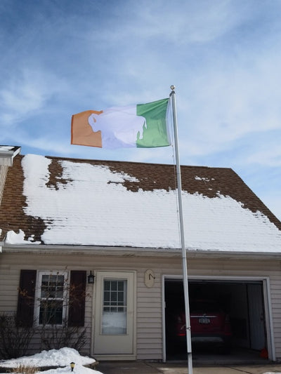 GREEN WHITE AND ORANGE IRELAND FLAG WITH A WHITE STANDING BUFFALO IN THE CENTER ON A FLAGPOLE