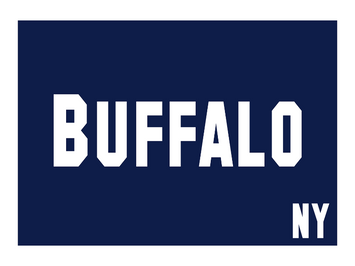 3'x5' Buffalo New York Nylon Flag