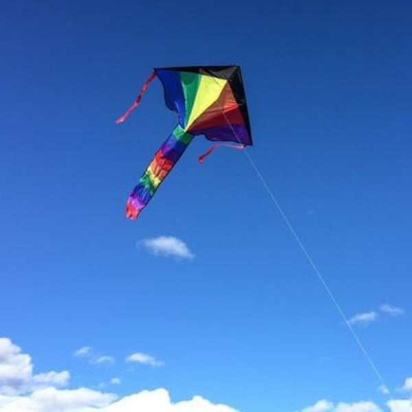 Rainbow Fly-Hi Kite