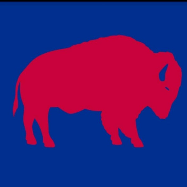 BLUE BANNER FLAG WITH RED STANDING BUFFALO IN THE CENTER