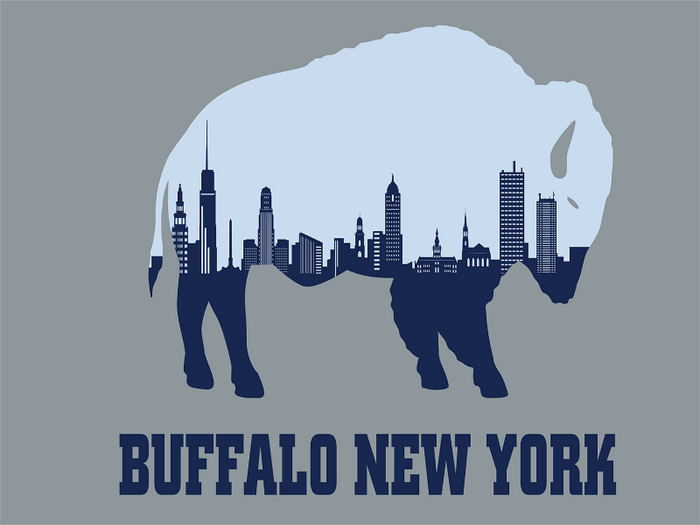 GREY FLAG WITH A BLUE BUFFALO AND A SKYLINE INSIDE THE BUFFALO