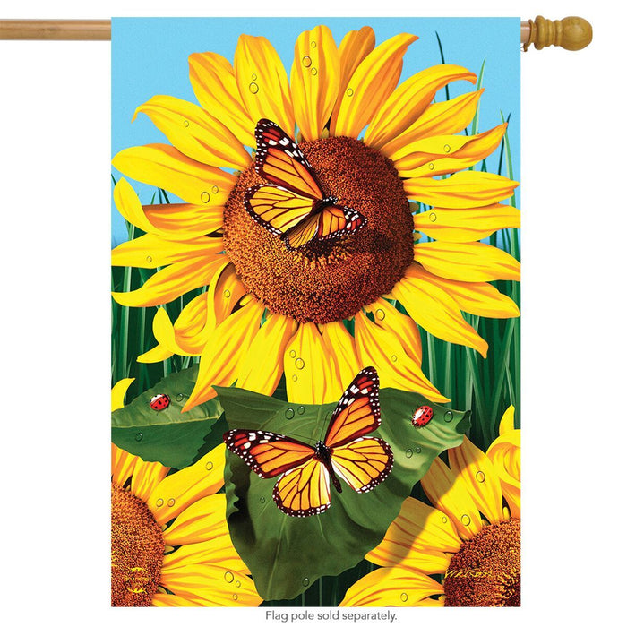 Sunflower Field Banner