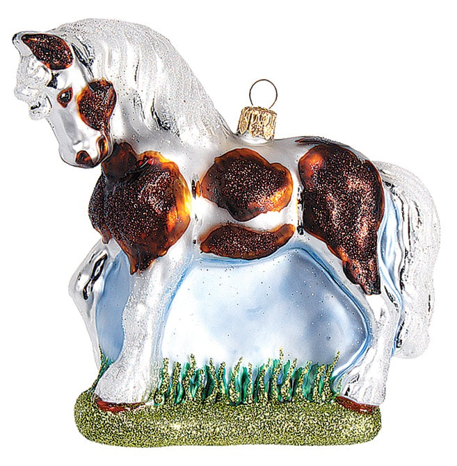 Brown and White Stallion Horse