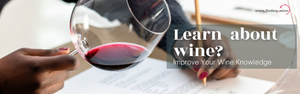 How to learn more about wine?