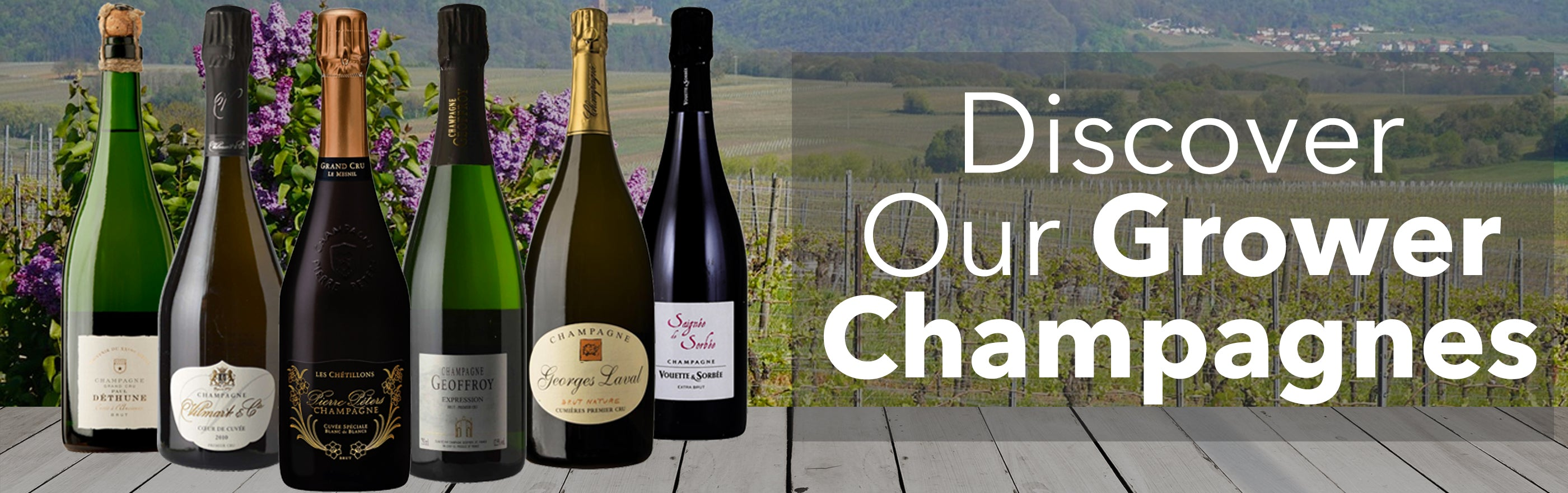 Buy Grower Champagne - Online store