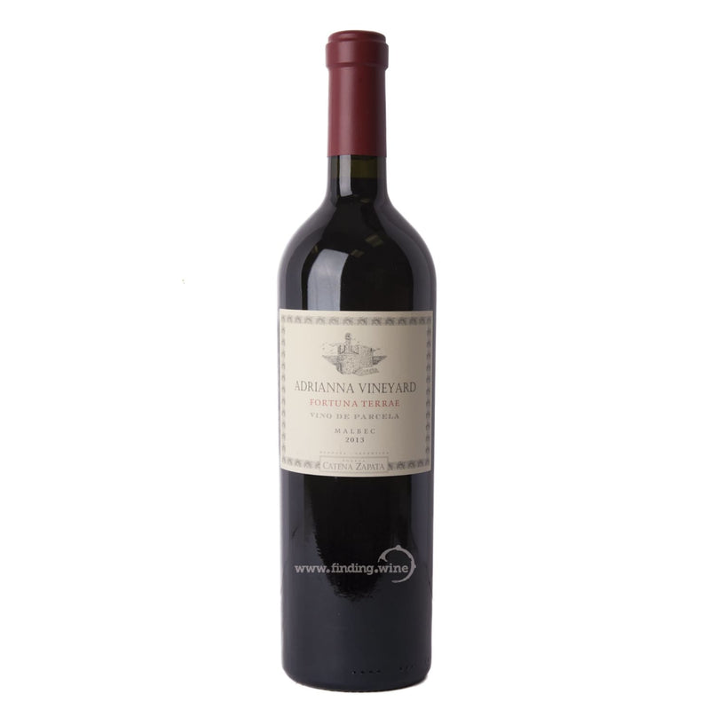 Catena Zapata 2013 - Adrianna Fortuna Terrae 750 ml. |  Red wine  | Be part of the Best Wine Store online