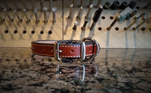 XL Studded Leather Dog Collar