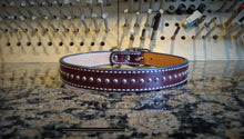Medium Studded Leather Dog Collar