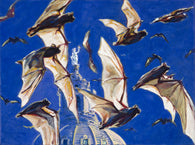 Bats in Austin AKA Bat Party fine art print