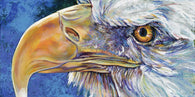 American Bald Eagle limited edition canvas giclee print