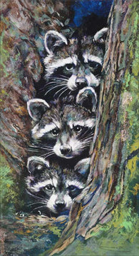 Racoon Pile limited edition canvas giclee print