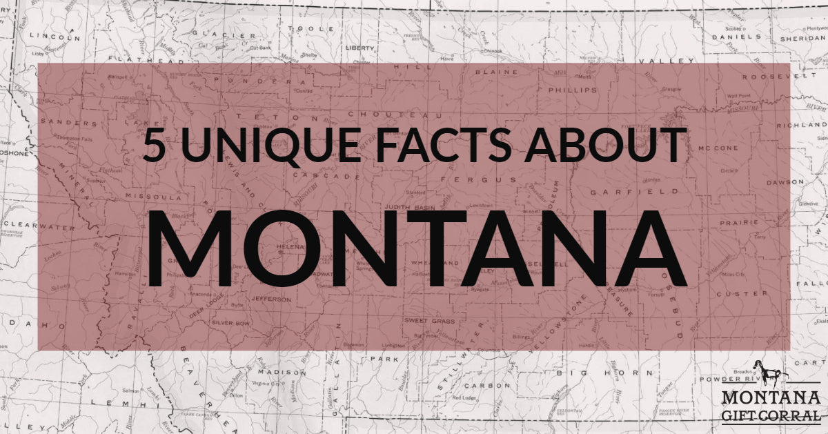 5 Unique Facts About Montana