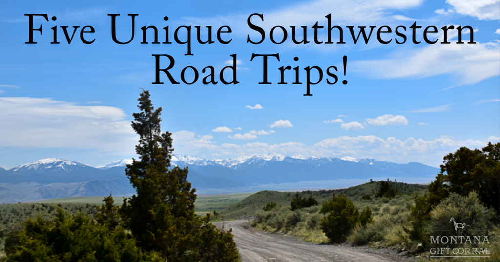 Five Unique Southwestern Road Trips! Cover Photo Courtesy of Issa Rabideaux