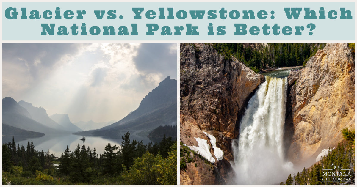 Glacier vs Yellowstone: Which National Park is Better?