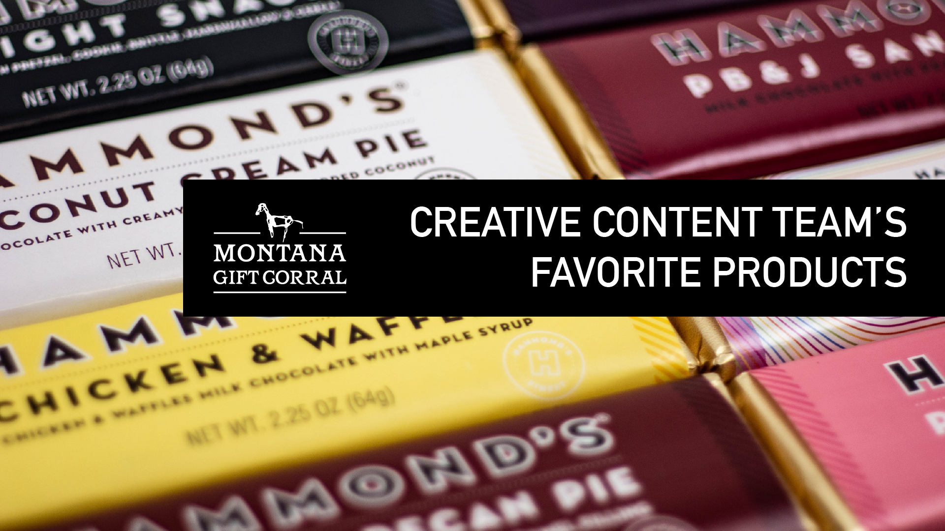 Creative Content Team's Favorite Things