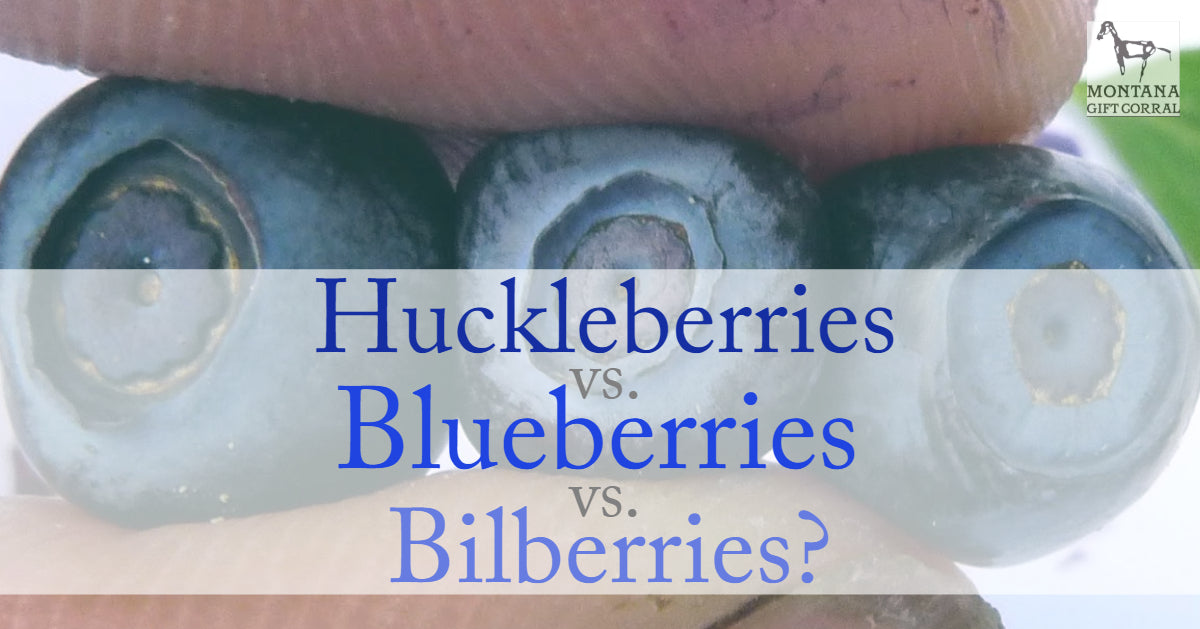 Huckleberries vs. Blueberries vs. Bilberries? Oh My….