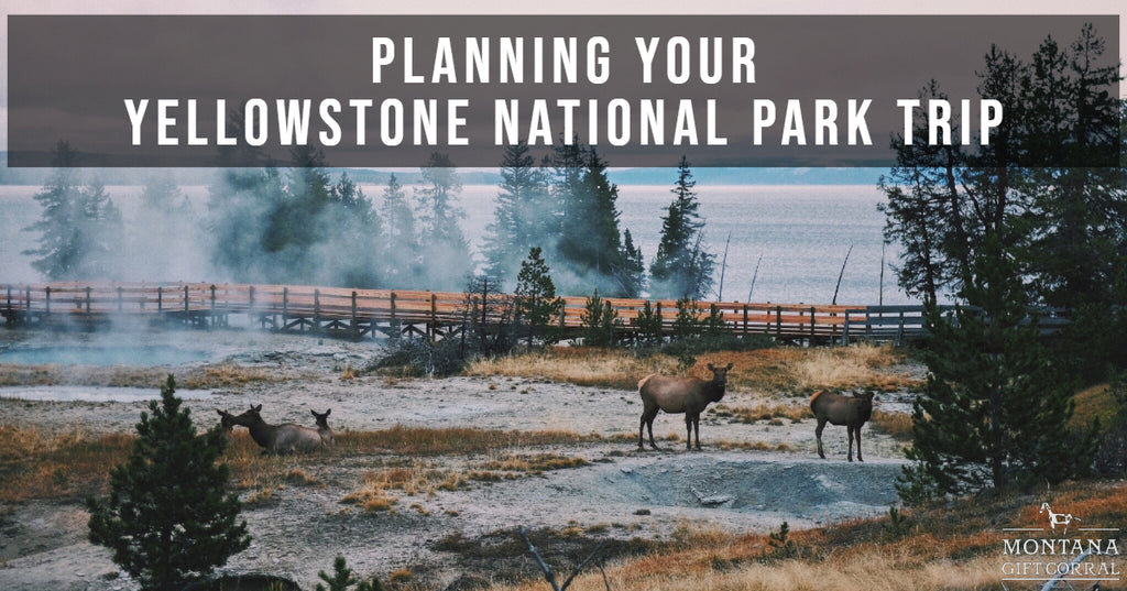 Montana Vacation Planning: Planning Your Yellowstone National Park Trip