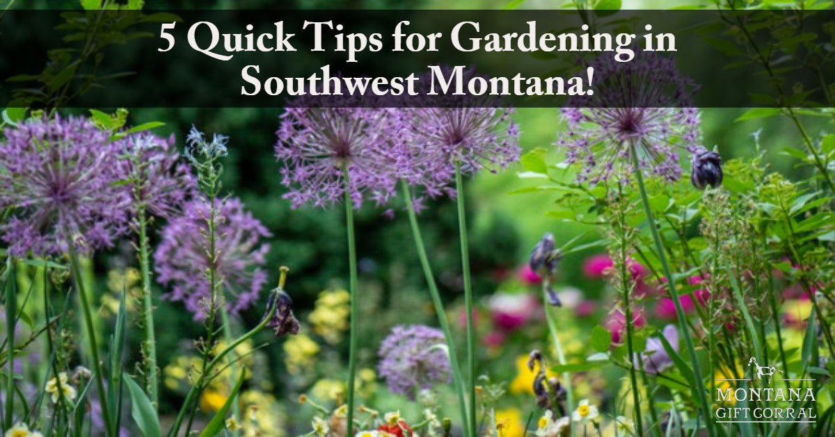 5 Quick Tips for Gardening in Southwest Montana!