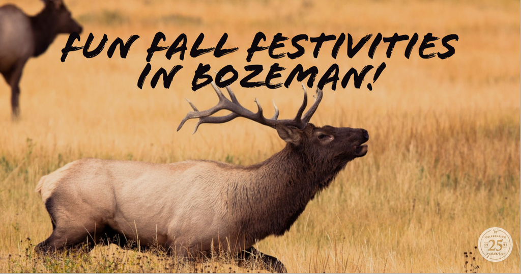 Fun Fall Festivities in Bozeman!