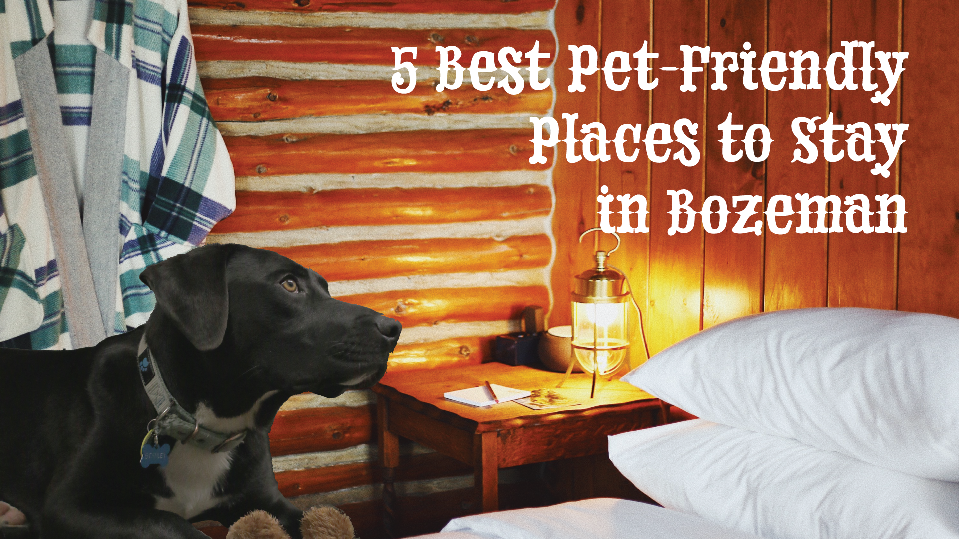 Pet-Friendly Places to Stay in Bozeman