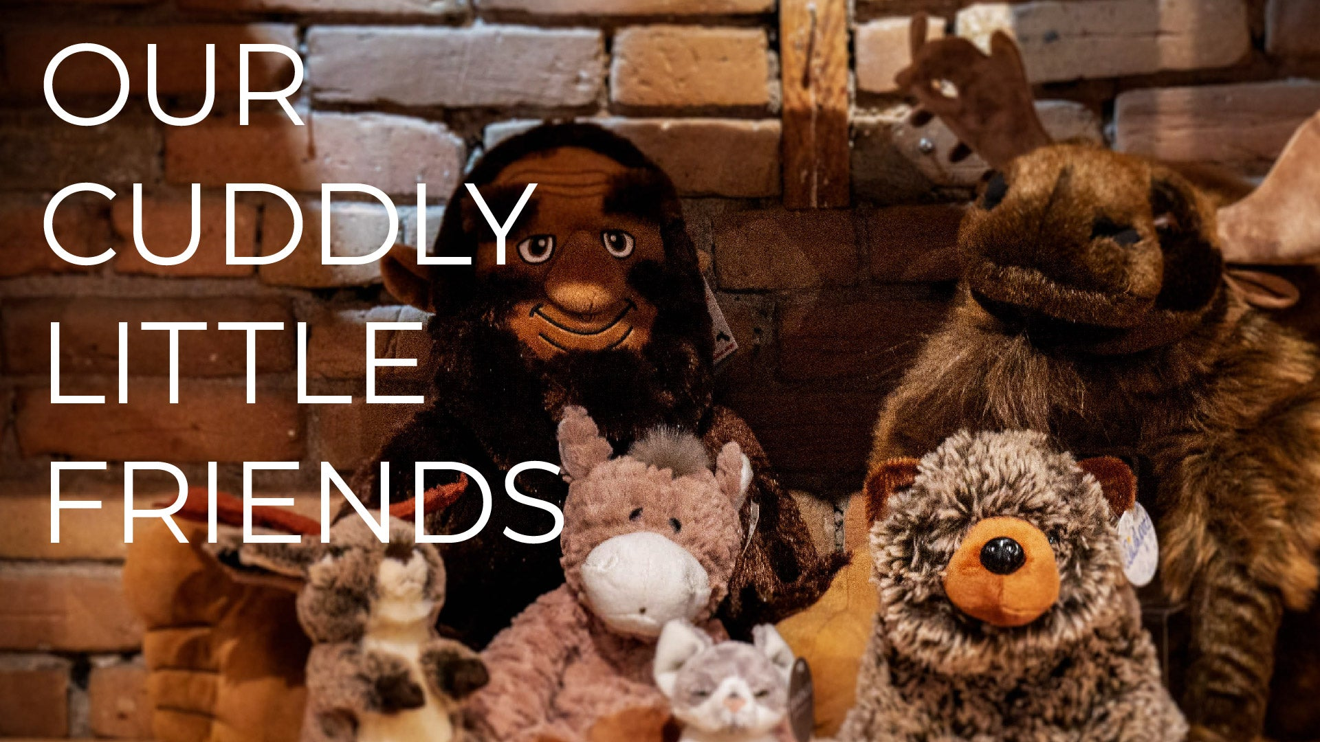 Our Favorite Stuffed Animals