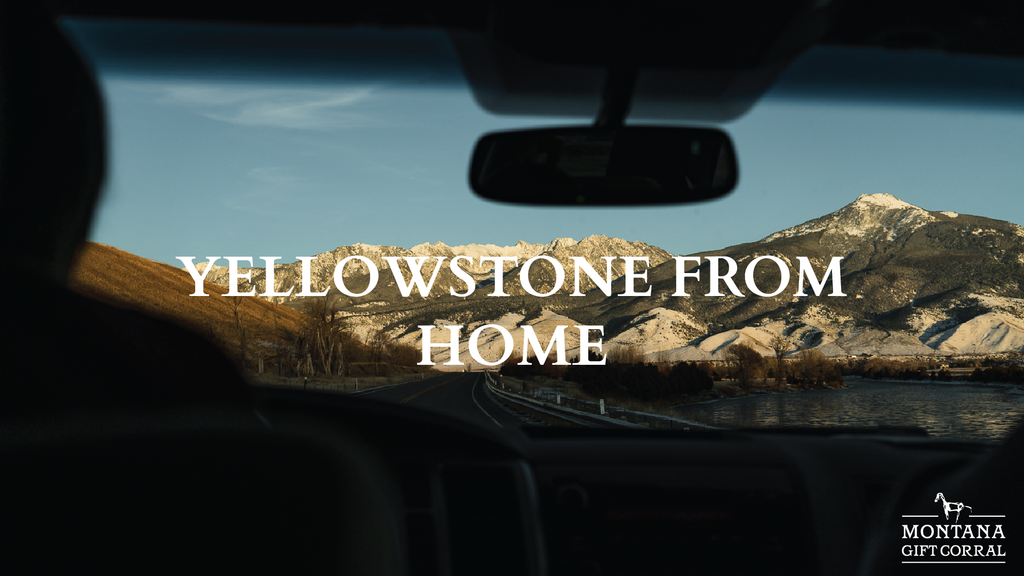 Explore Yellowstone from Home!