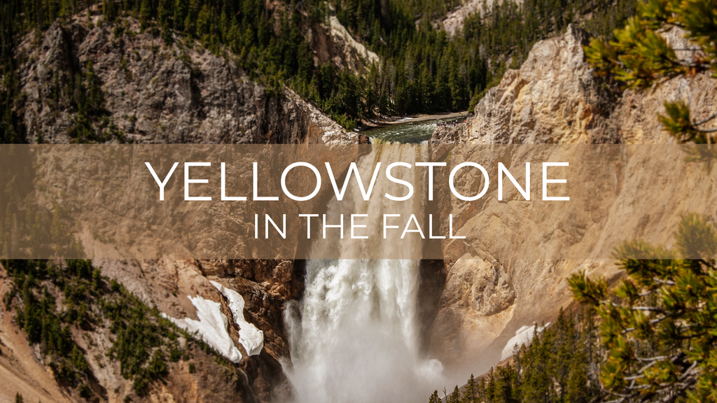 Yellowstone in the Fall